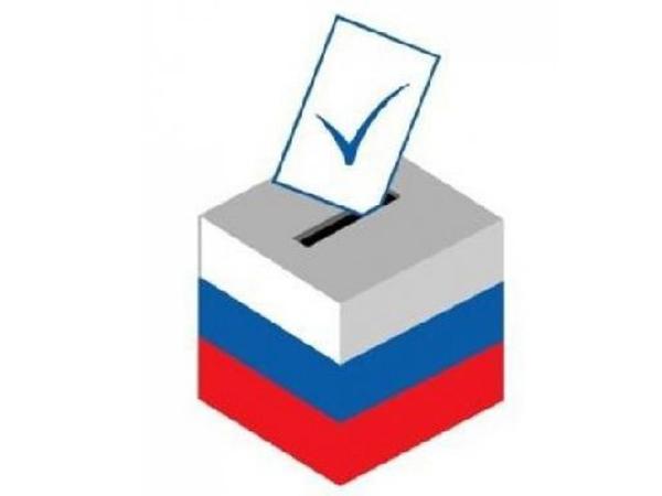картинка выборы